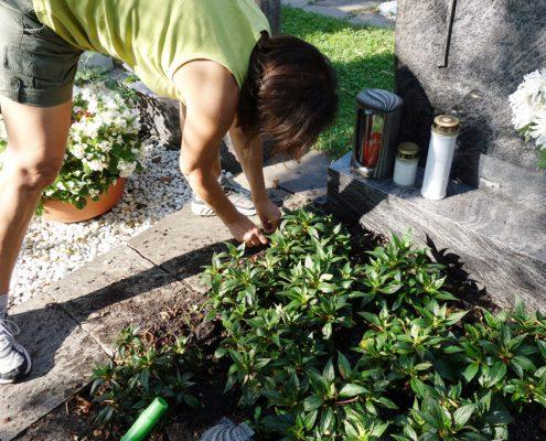 Friedhofsgaertner Grabpflege trauerkarnz grabbepflanzung